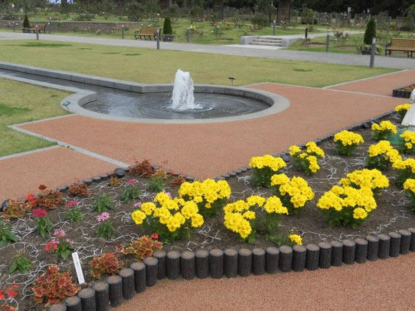 敷島公園・バラ園